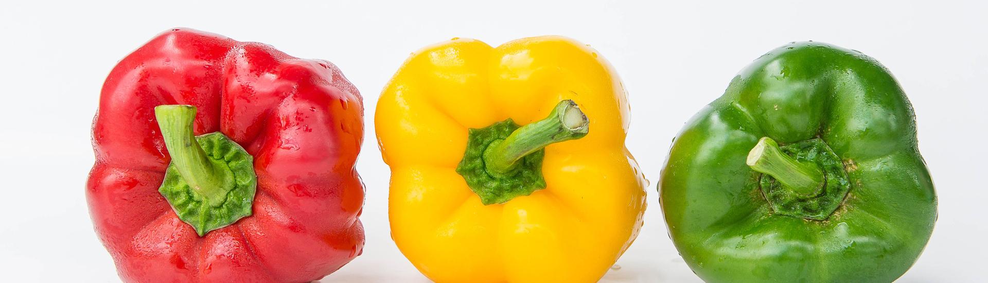 voeding bij gezondheid en ziekte boek