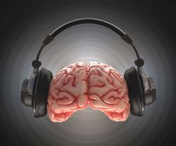 Tinnitus zit overal in de hersenen